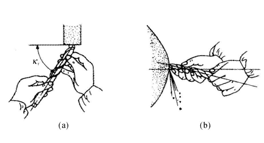 壁纸 简笔画 昆虫 手绘 线稿 桌面 923_501